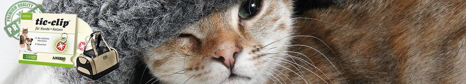 Billigste online katteshop