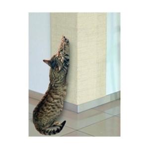 Kradse hjørne kat