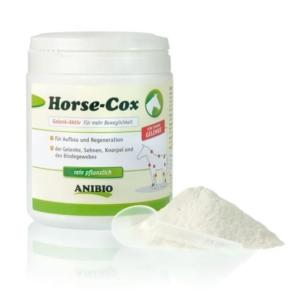 Horse Cox konstilskud til hest