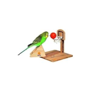 basketbold til fugl